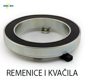 REMENICe kvacila