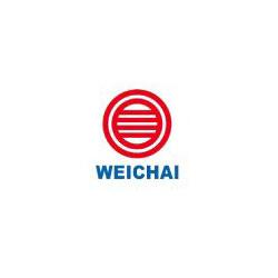weichai-logo250x250