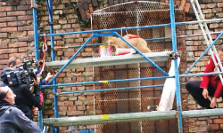 shooting location services rijeka scaffold